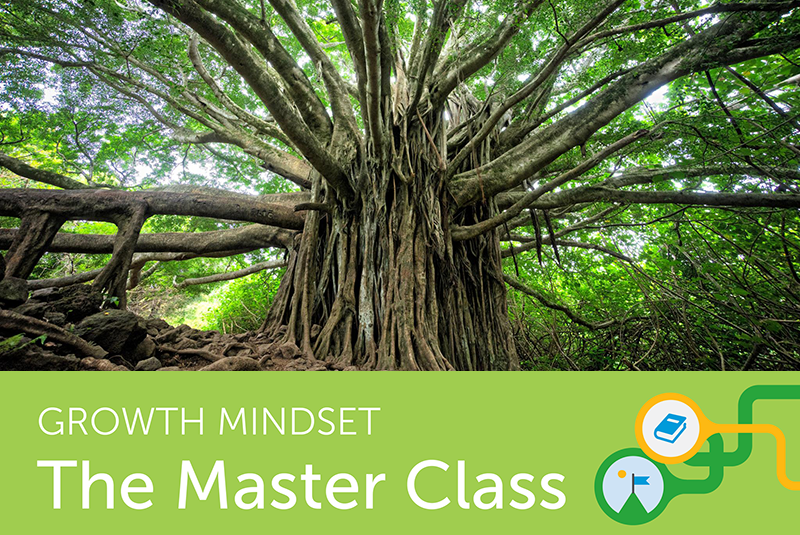You've Heard of Growth Mindset, but What Is Growth Mindset Culture?